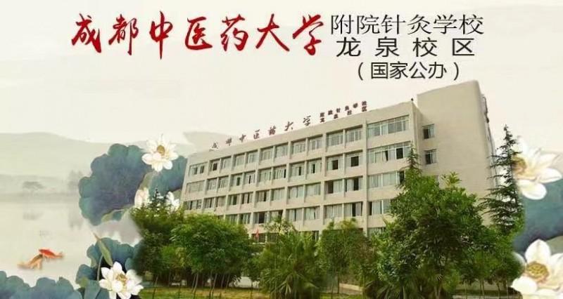 成都中医药大学附属医院针灸学校龙泉校区